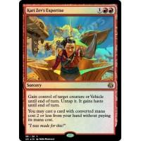 Kari Zev's Expertise FOIL