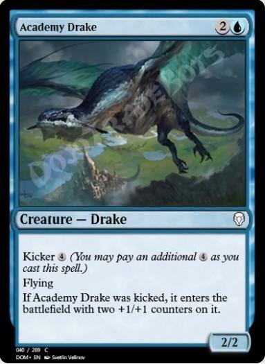 Academy Drake