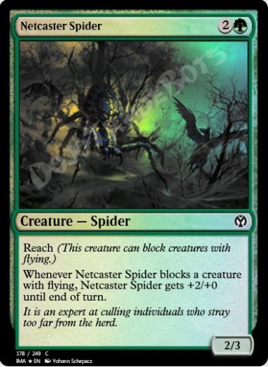 Netcaster Spider FOIL