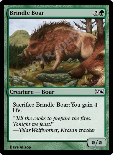 Brindle Boar