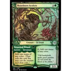 Rosethorn Acolyte FOIL