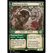Rosethorn Acolyte